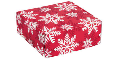 Decorative Mailer - Printed, Red & White Snowflakes